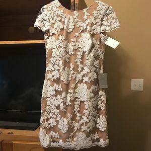 Dresses - NWT Dress the Population SHORT SLEEVE dress